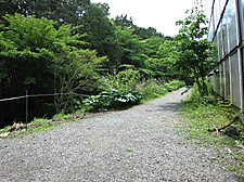 Img_5436